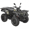 ATV Quad Off Road 4 x 4 300cc yeşil